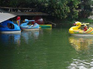 jual-perahu-bebek